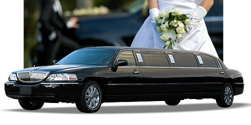 skylightlimousine airport shuttle wedding limo limousine wine tours services
